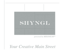 Shyngl Creative Economy Network