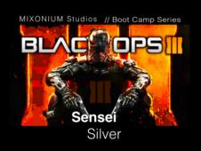 Sensei Silver - cod3